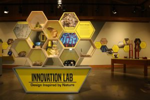 Innovation Lab exhibition